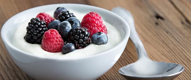 yogurt final